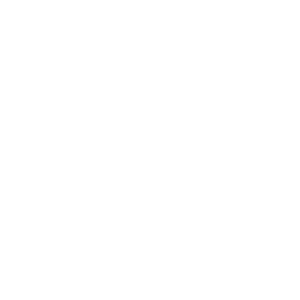 Arepaland Logo White